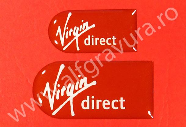 Etichete cu rasina 40x18 mm