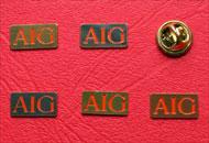 Insigne pins