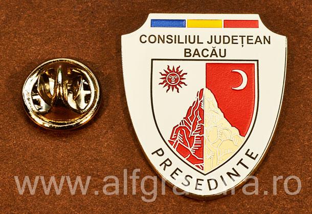 Insigna placata cu nichel Presedinte Consiliul Local Bacau