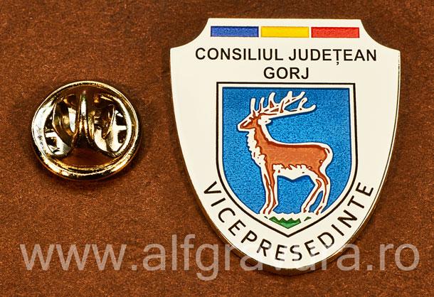 Insigna placata cu nichel Vicepresedinte Consiliul Local Gorj