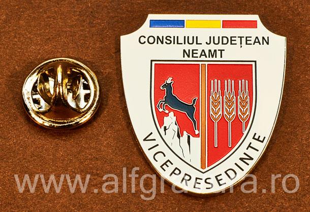 Insigna placata cu nichel Vicepresedinte Consiliul Local Neamt