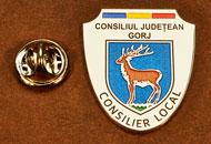 Insigne Suflate Nichel Consilier Local Gorj