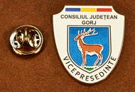 Insigne Suflate Nichel Vicepresedinte Consiliul Local Gorj