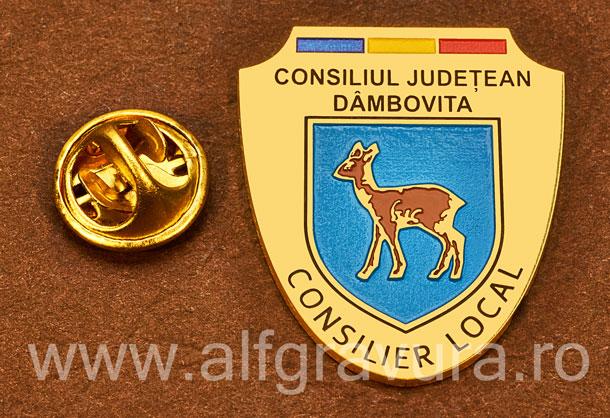 Insigna placata cu aur Consilier Local Dambovita