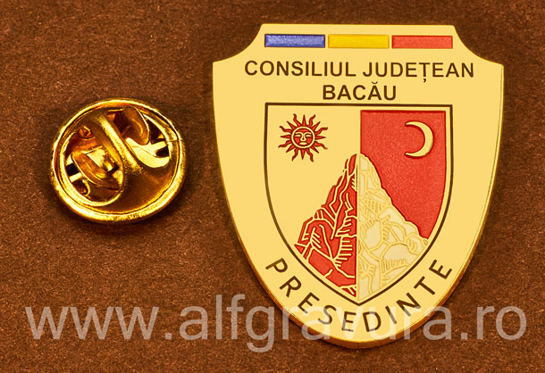 Insigna placata cu aur Presedinte Consiliul Local Bacau
