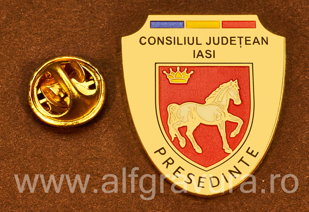 Insigna placata cu aur Presedinte Consiliul Local Iasi