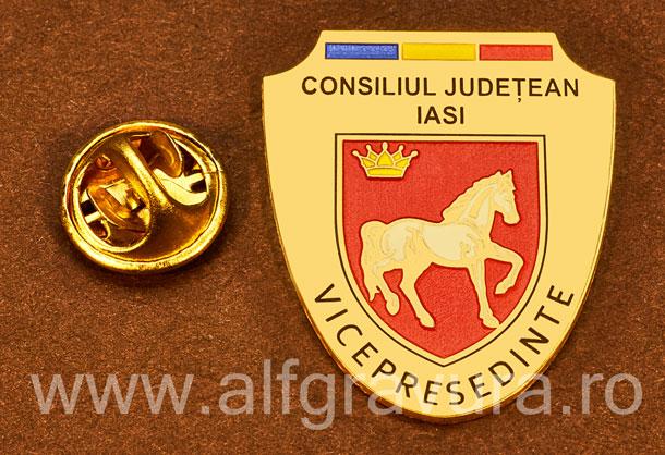 Insigna placata cu aur Vicepresedinte Consiliul Local Iasi
