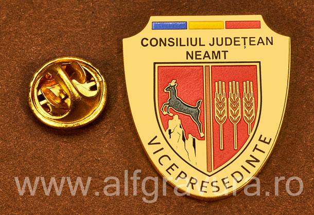 Insigna placata cu aur Vicepresedinte Consiliul Local Neamt