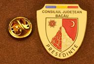 Insigne Placate Aur Presedinte Consiliul Local Bacau