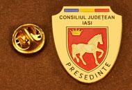 Insigne Aurite Presedinte Consiliul Local Iasi