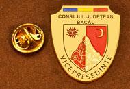 Insigne Placate Aur Vice Presedinte Consiliul Local Bacau