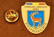 Insigne Suflate Aur Vicepresedinte Consiliul Local Gorj