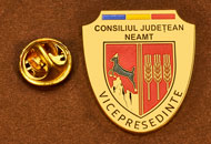 Insigne Aurite Vice-Presedinte Consiliul Local Neamt
