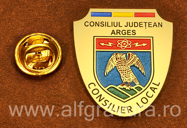 Insigna gravata alama Consilier Local Arges