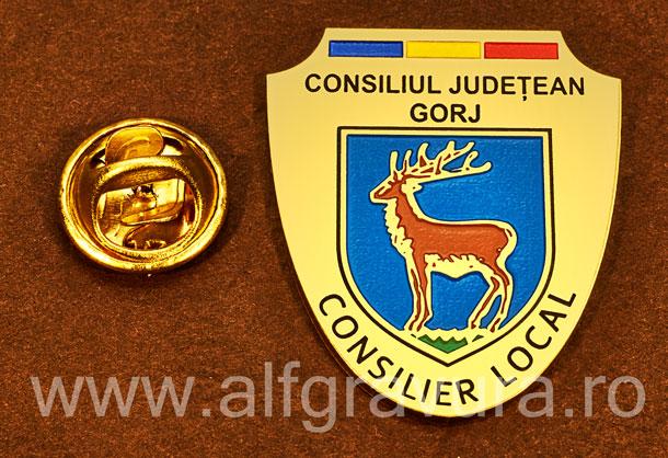 Insigna gravata alama Consilier Local Gorj