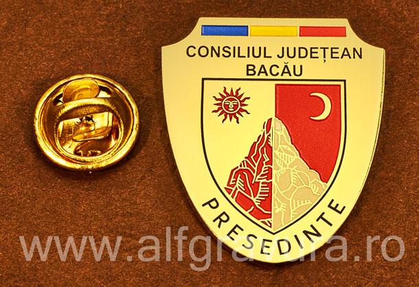 Insigna gravata alama Presedinte Consiliul Local Bacau