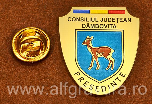 Insigna gravata alama Presedinte Consiliul Local Dambovita