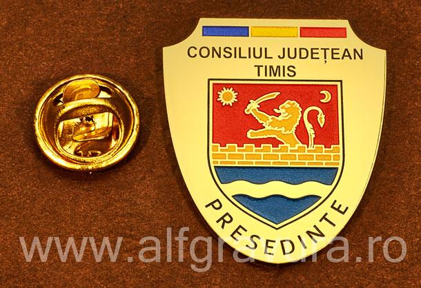 Insigna gravata alama Presedinte Consiliul Local Timis