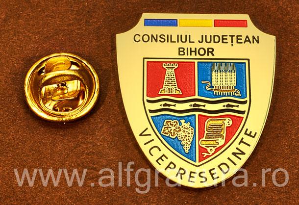Insigna gravata alama Vicepresedinte Consiliul Local Bihor