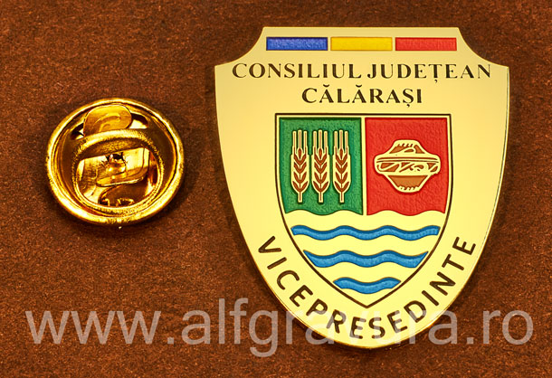 Insigna gravata alama Vicepresedinte Consiliul Local Calarasi