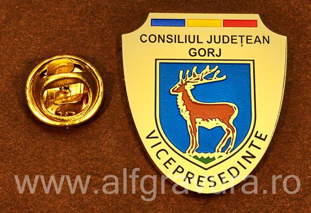 Insigna gravata alama Vicepresedinte Consiliul Local Gorj
