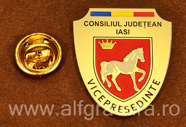 Insigna gravata alama Vicepresedinte Consiliul Local Iasi