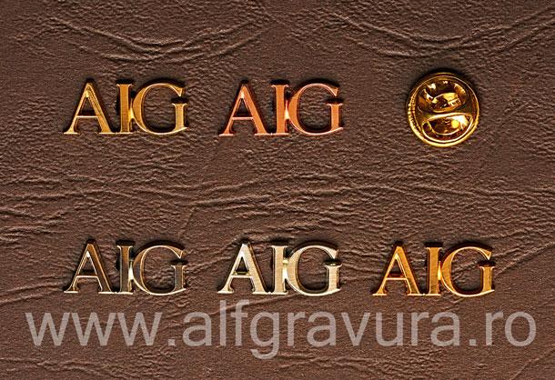 Insigna Litere Aurite Decupate