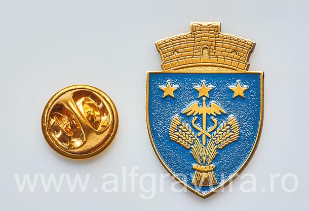 Insigna Gravata Ineu