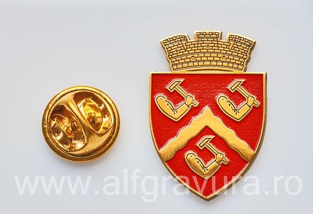 Insigna Gravata Targu Ocna