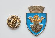 Insigne Nichelate Brasov