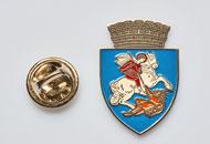 Insigne Nichelate Craiova
