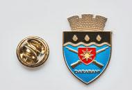Insigne Nichelate Darabani