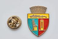 Insigne Nichelate Primaria Cluj Napoca
