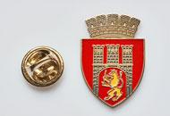 Insigne Nichelate Sighisoara