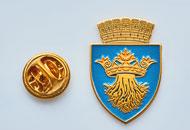 Insigne Aurite Brasov