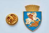Insigne Aurite Craiova