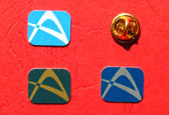 Insigne pins policromie dreptunghiulare