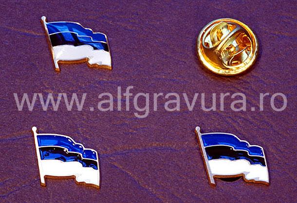 Insigna Steagul Estoniei