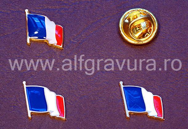 Insigna Steagul Frantei