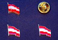 Insigne steagul Austriei