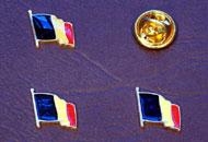 Insigne steagul Belgiei