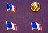 Insigne steagul Frantei