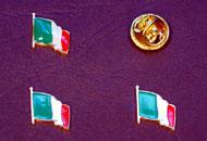 Insigne steagul Italiei