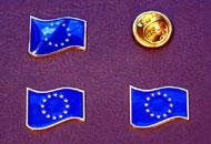 Insigne drapelul UE