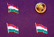 Insigne steagul Ungariei