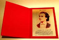 Diplome plus rosii placheta policromie