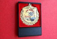 Spate medalie M74 in caseta plastic