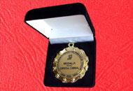 Spate medalie M73 in caseta plus