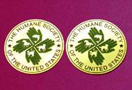 Medalii gravate alama periata