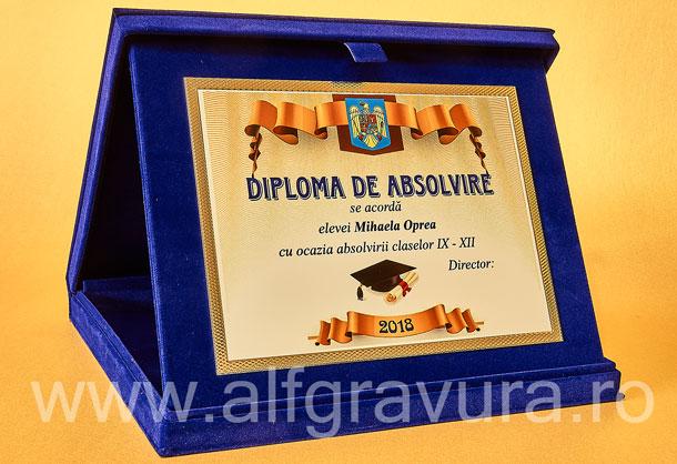 Caseta Albastra Plus - Placheta aluminiu PAL27